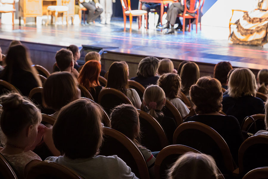 The audience in the theater watching a play